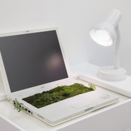 IBookgarden |2014 ラップトップコンピュータ、水、植物、土、棚、卓上ランプ、昼光色の電球|42 x 65 x 44 cmLaptop, water, plants, earth, shelf, desktop lamp with daylight bulb |42 x 65 x 44 cm Photo: Dorine Potel, Courtesy of the artist and ART : CONCEPT, Paris
