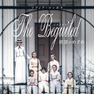 『The Beguiled/ビガイルド 欲望のめざめ』第1弾ビジュアル (C)2017 Focus Features LLC. All Rights Reserved.