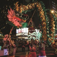 International Chinese New Year Night Parade