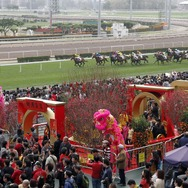 Chinse New Year Raceday